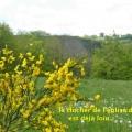19_05_22_04_cb_sauret