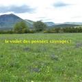 19_05_29_25_cb_beaunechaud