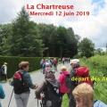 19_06_12_01_mab_chartreuse