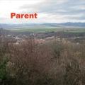 19_03_06_02_mab_parent-02