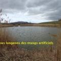 19_03_10_23_jfg_chadeleuf