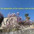19_03_20_40_jfg_naves