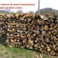 19_04_10_20_jfg_salledes