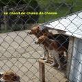 19_04_10_24_jfg_salledes