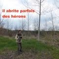 19_04_11_19_jfg_malmouche