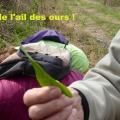 19_04_11_23_jfg_malmouche