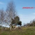 19_04_17_17_cp_gelles