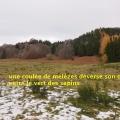 19_11_21_17_cb_madeleine