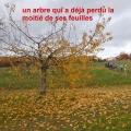 19_11_28_26_cb_chatel
