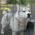 20_01_23_37_mab_boissc3a9jour-ceyrat
